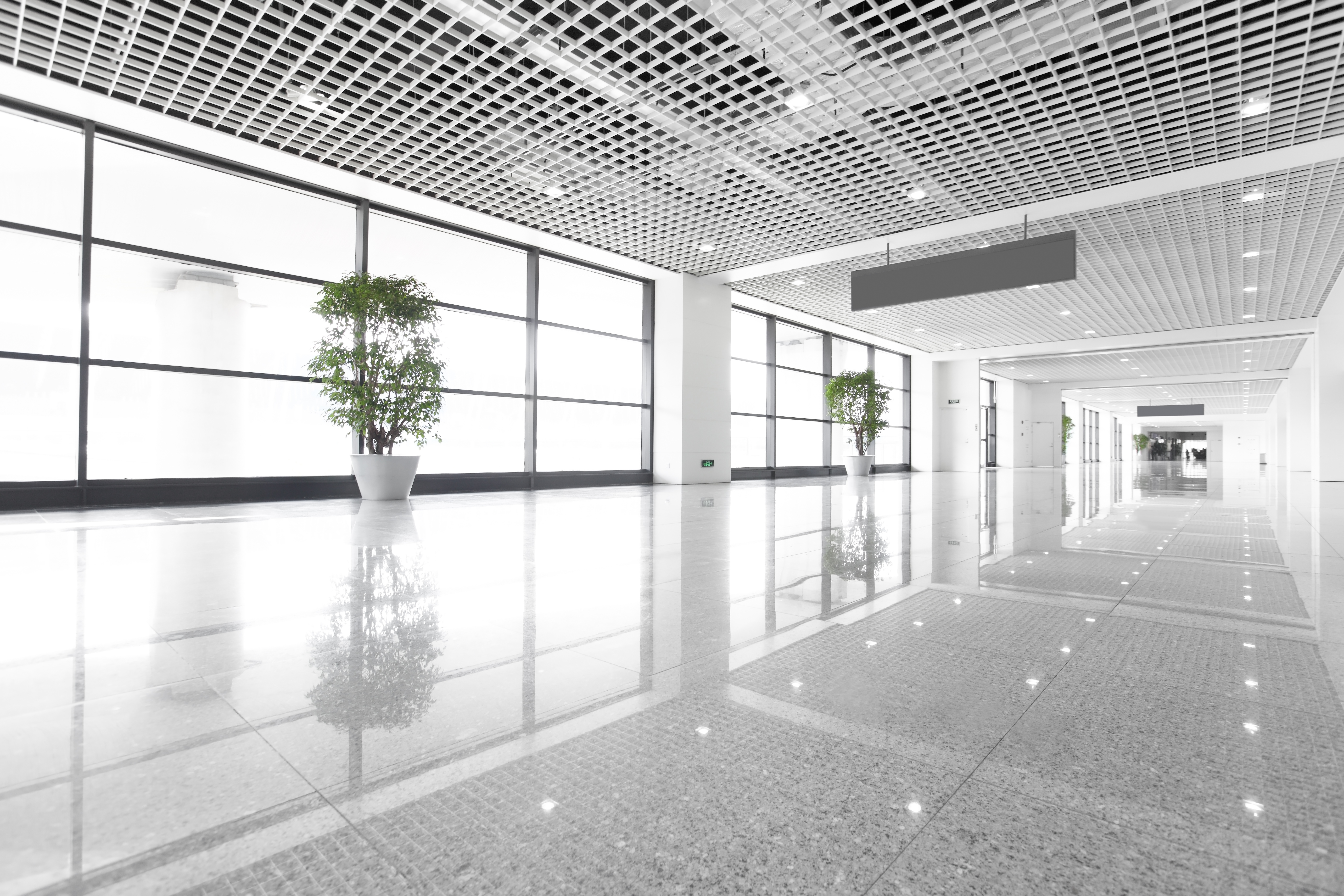 3 Reasons It Is Important to Have Clean Floors